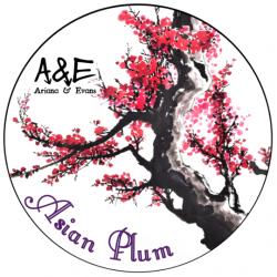 Savon de rasage Asian Plum Ariana & Evans