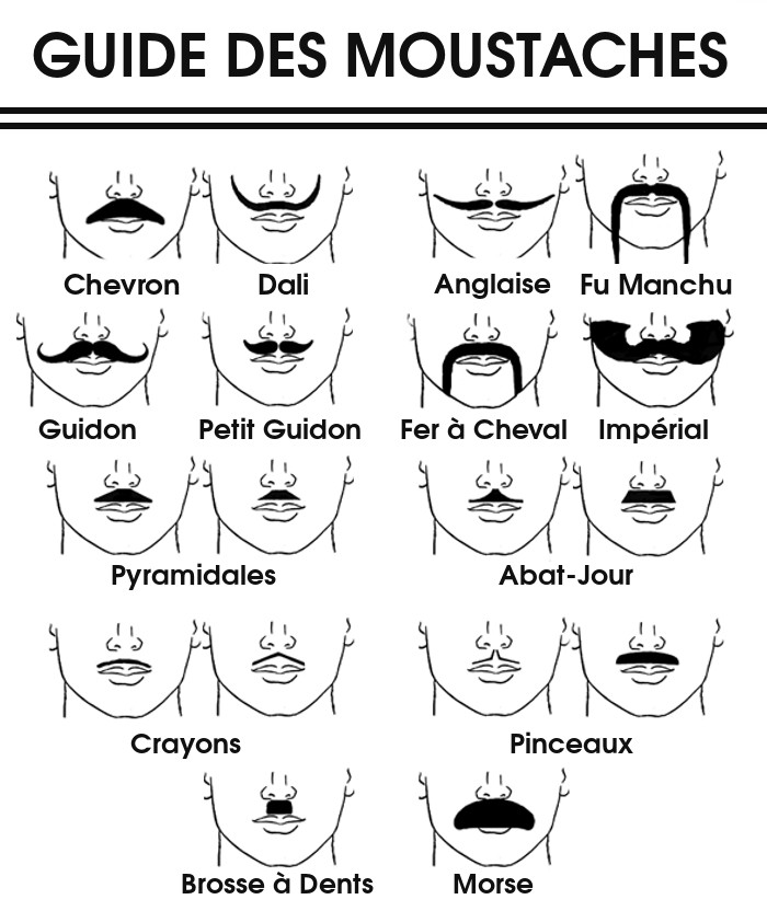 Les formes de moustaches