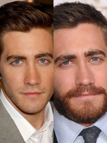 Pousse de la barbe Jake Gyllenhaal